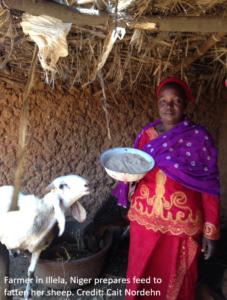Woman farmer in Niger